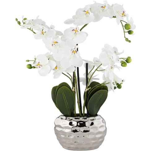 """Dahlia Studios White Phalaenopsis 23""""H Faux Orchid in Silver Ceramic Pot - image 1 of 4"""