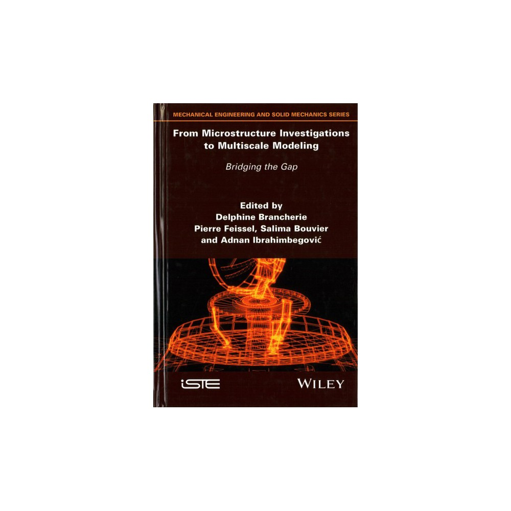 From Microstructure Investigations to Multiscale Modeling : Bridging the Gap (Hardcover)