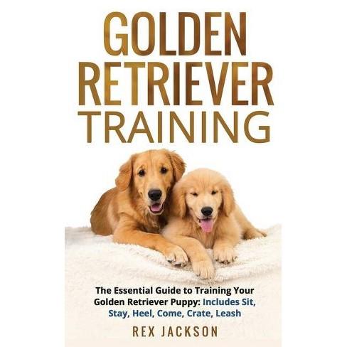 Golden Retriever Training - by  Rex Jackson (Paperback) - image 1 of 1