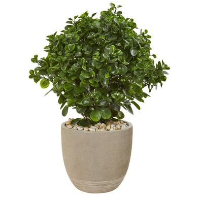 """30"""" Peperomia Artifical Plant in Sand Stone Planter - Nearly Natural"""