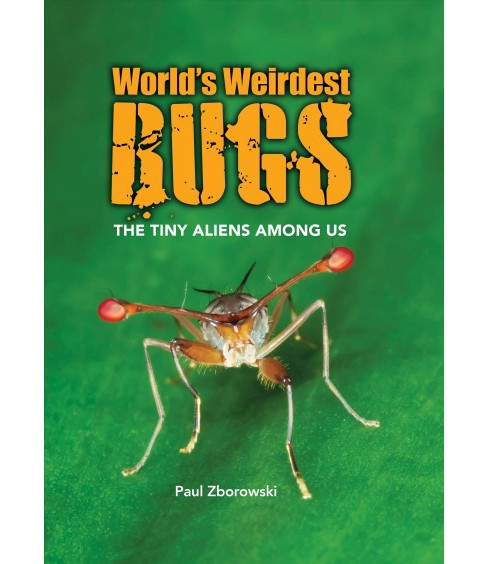 World's Weirdest Bugs : The Tiny Aliens Among Us -  by Paul Zborowski (Hardcover) - image 1 of 1