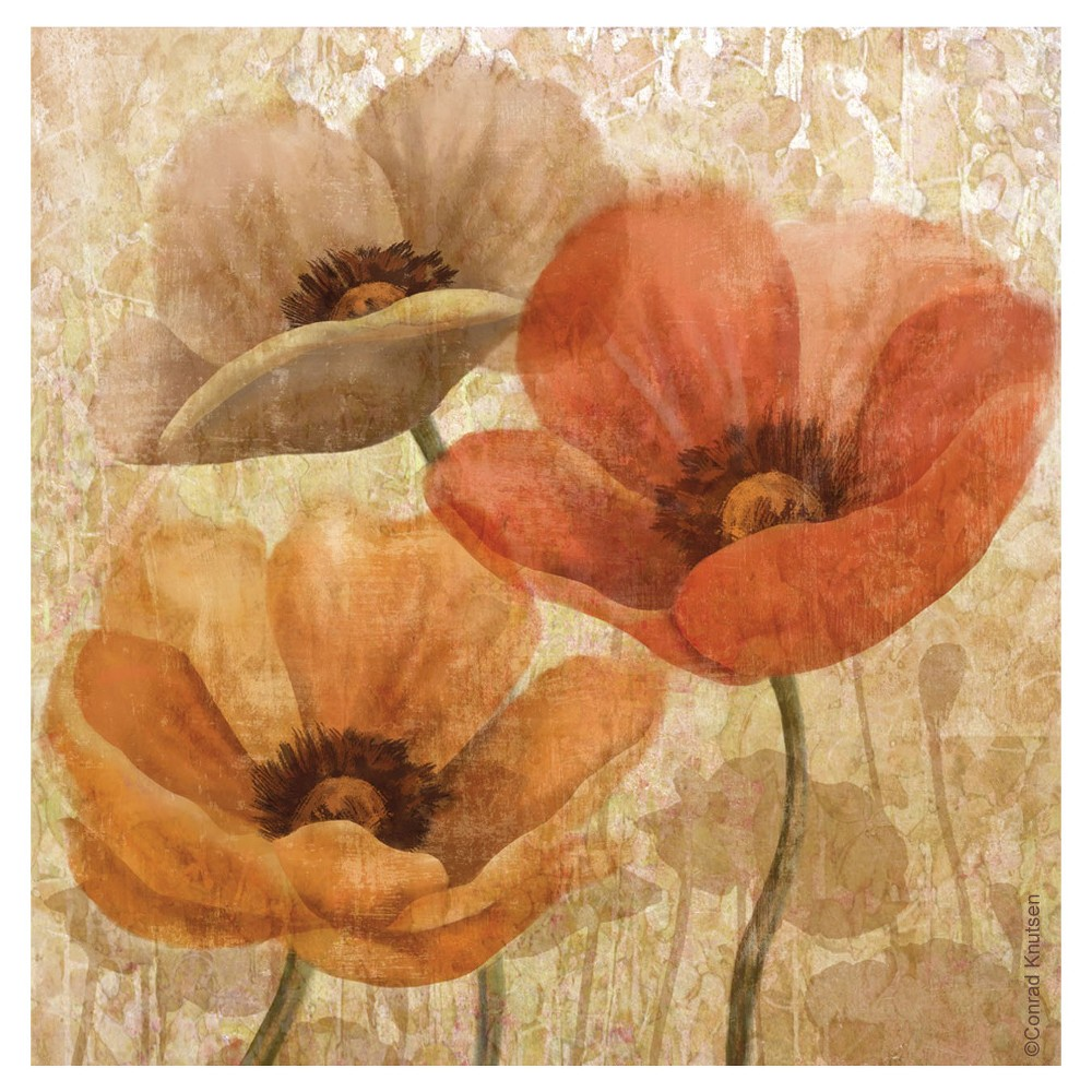 Image of Thirstystone Poppy Allure 4 Piece Occasions Coaster Set