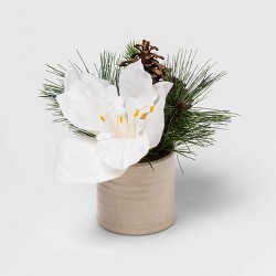 "8.5"" x 8"" Artificial Amaryllis and Pine Arrangement with Pine Cone in Pot - Green/White - Threshold™"
