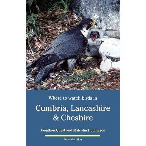 Where to Watch Birds in Cumbria, Lancashire & Cheshire - (Where to Watch Birds S) 2 Edition (Paperback) - image 1 of 1