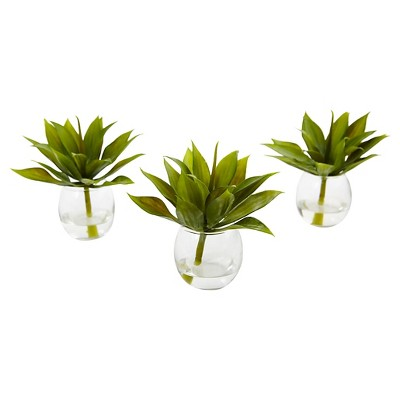 5.75  Mini Agave Succulent Trio in Glass Vases (Set of 3)- Nearly Natural