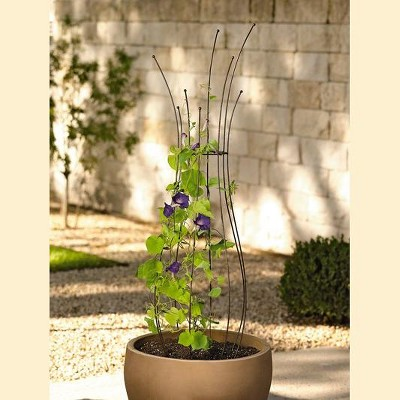 Decorative Metal Pot Trellis - Gardener's Supply Company