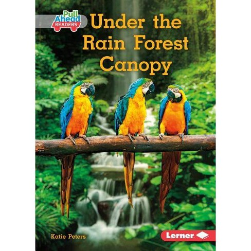 Under the Rain Forest Canopy - (Let's Look at Animal Habitats (Pull Ahead Readers -- Nonfict) - image 1 of 1