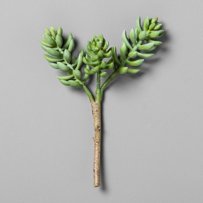 Succulent Stem (10 )- Hearth & Hand™ with Magnolia