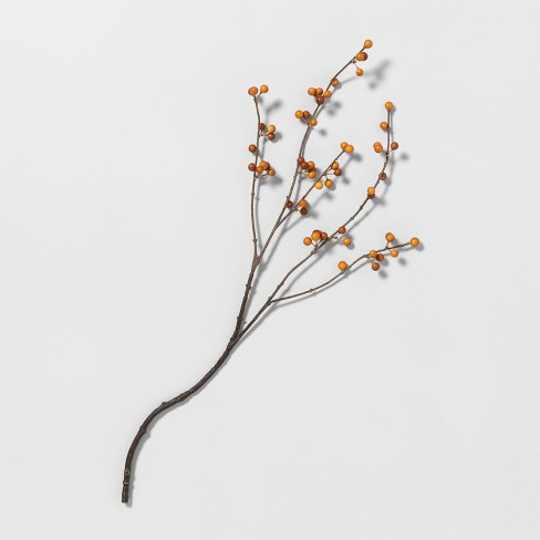 """26"""" Faux Orange Berry Stem - Hearth & Hand™ with Magnolia - image 1 of 1"""