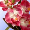 """12"""" Pink Orchid Flower - National Tree Company - image 3 of 4"""