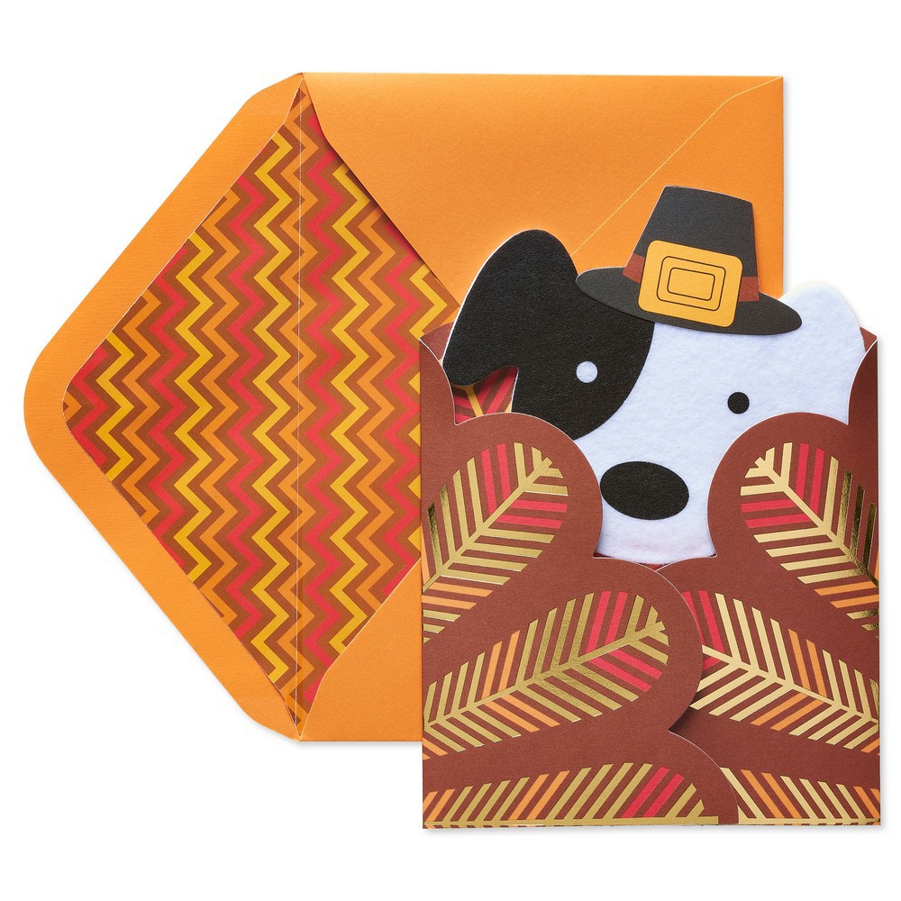 Turkey Dog Thanksgiving Greeting Card - Papyrus, Multi-Co...