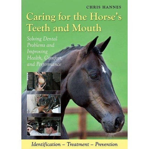 Caring for the Horse's Teeth and Mouth - by  Chris Hannes (Hardcover) - image 1 of 1