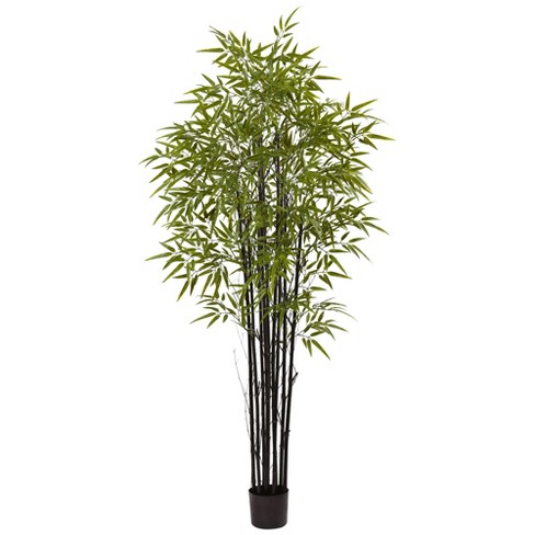 Artificial 6ft Indoor/Outdoor Bamboo Tree x 9 With 1470 Leaves UV Resistant - Black - Nearly Natural - image 1 of 3