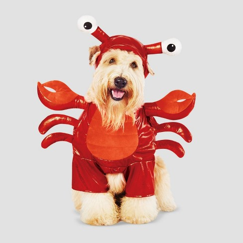 Lobster Frontal Dog and Cat Costume - Hyde & EEK! Boutique™ - image 1 of 4
