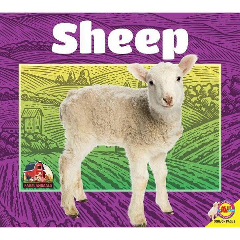 Sheep - (Farm Animals) by  Jared Siemens (Paperback) - image 1 of 1