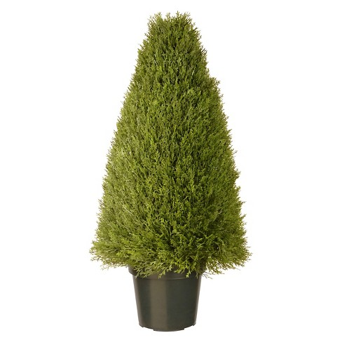 "Upright Juniper with Pot - Green (36"") - image 1 of 1"