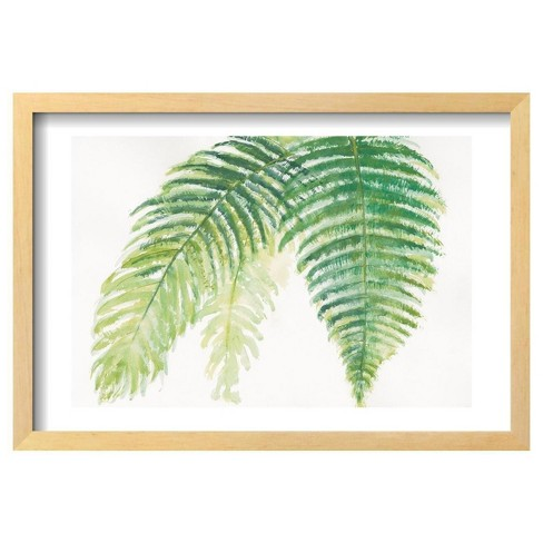 "Ferns III Square by Chris Paschke Framed Poster 19""x13"" - Art.Com - image 1 of 4"