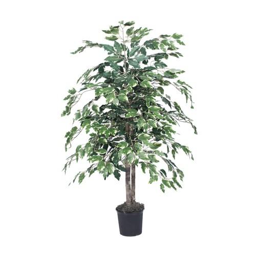 4 Artificial Variegated Ficus Bush Vickerman