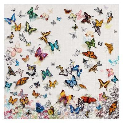 "35""x35"" Papillon By Allyson Fukushima Art On Canvas - Fine Art Canvas"