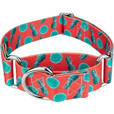 Country Brook Petz® 1 1/2 Inch Tropical Tango Martingale Dog Collar