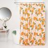 Microfiber Fruit Shower Curtain - Room Essentials™ - image 2 of 4