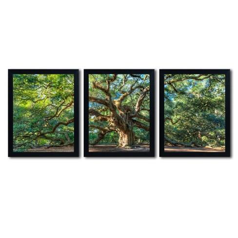 'Angel Oak Charleston' by Pierre Leclerc Ready to Hang Multi Panel Art Set - image 1 of 4