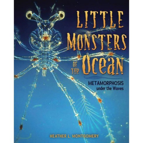 Little Monsters of the Ocean - by  Heather L Montgomery (Hardcover) - image 1 of 1