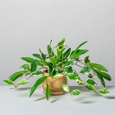 "7"" Mini Faux Hoya Potted Plant - Hearth & Hand™ with Magnolia"