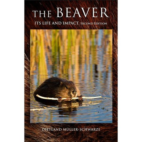 The Beaver - 2 Edition by  Dietland Muller-Schwarze (Hardcover) - image 1 of 1
