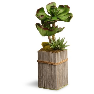 Garden Accents Artificial Succulent Plant Green 11  - National Tree Company®