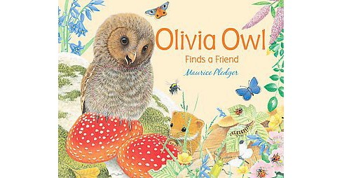 Olivia Owl Finds a Friend (Hardcover) - image 1 of 1