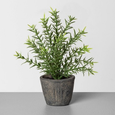 "7.5"" Faux Rosemary Potted Plant - Hearth & Hand™ with Magnolia"