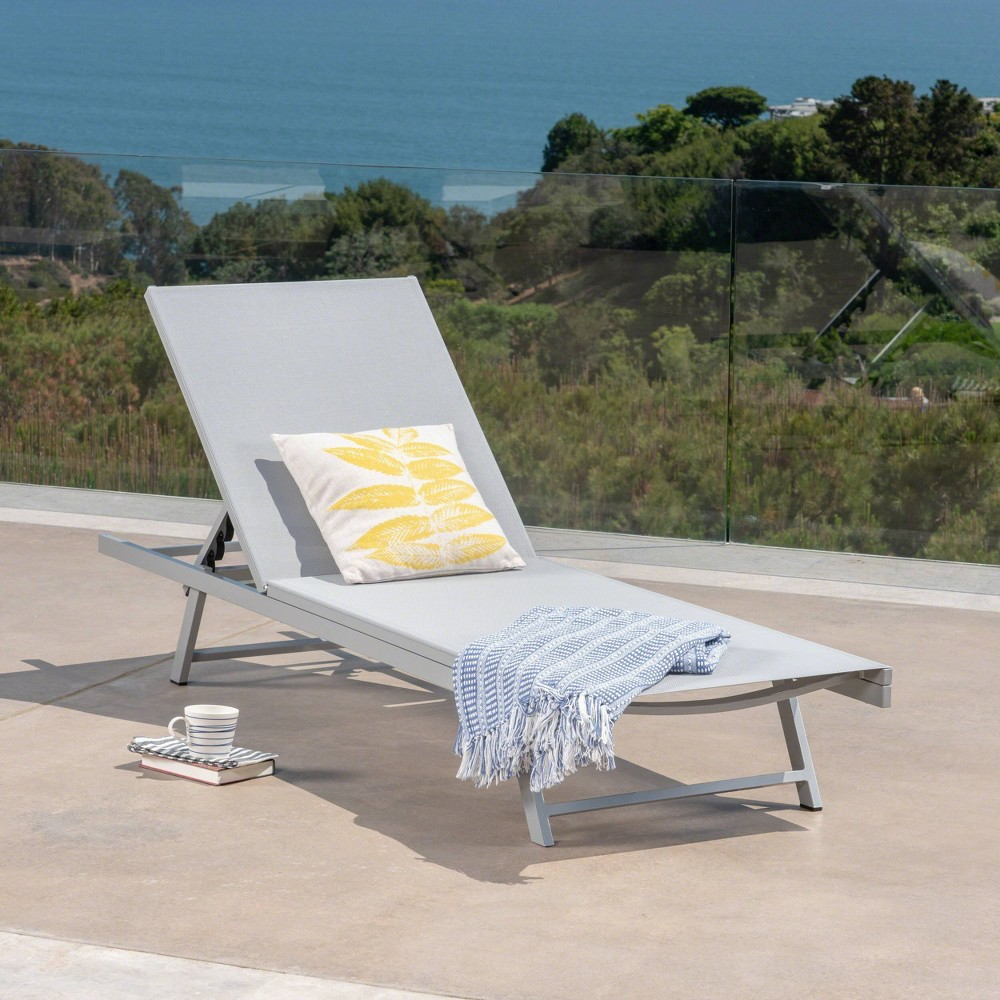 Salton Aluminum Chaise Lounge - Gray - Christopher Knight Home