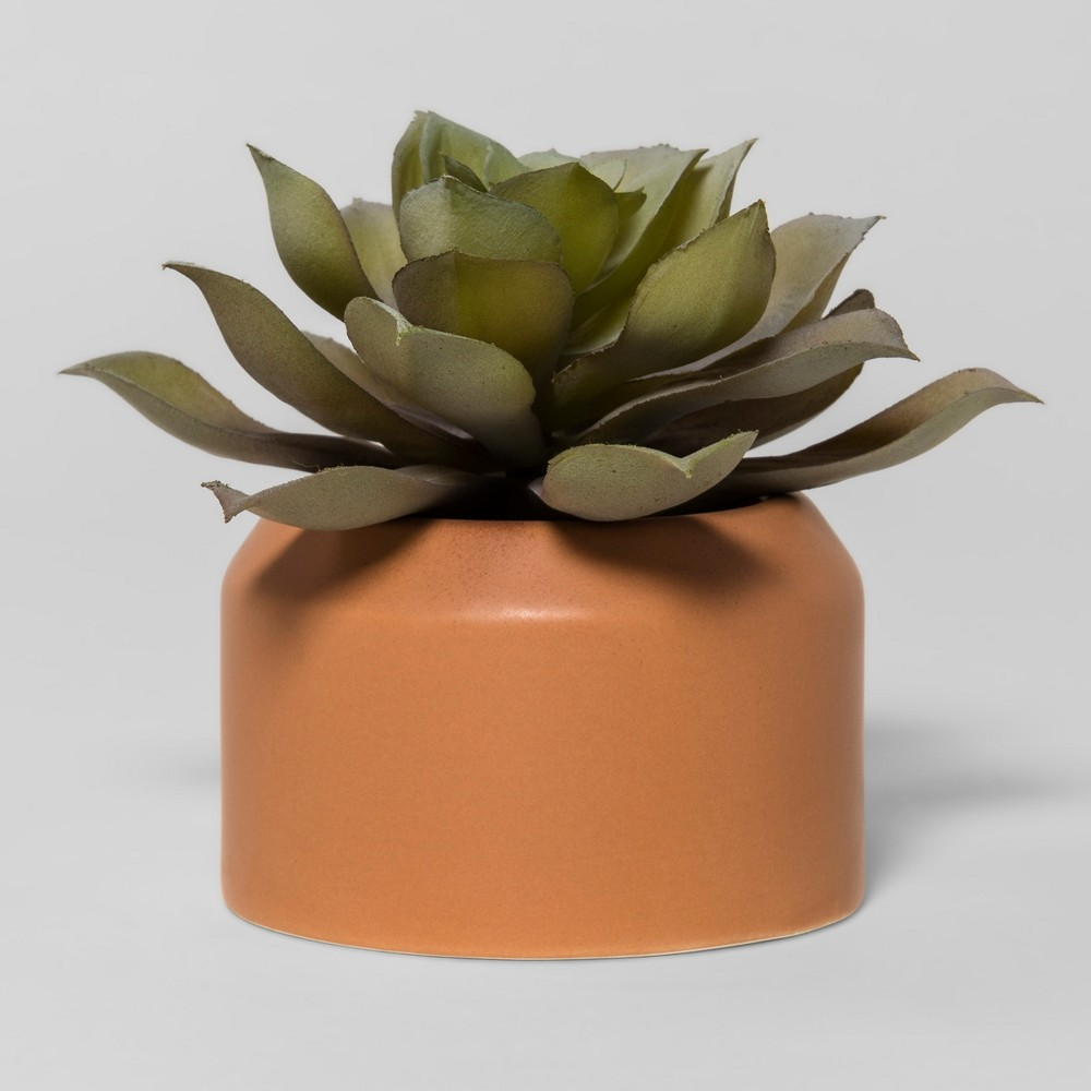 Artificial Succulent Small - Project 62 , Green
