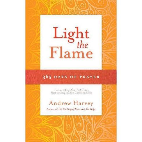 Light the Flame - by  Natasha Stoynoff (Paperback) - image 1 of 1