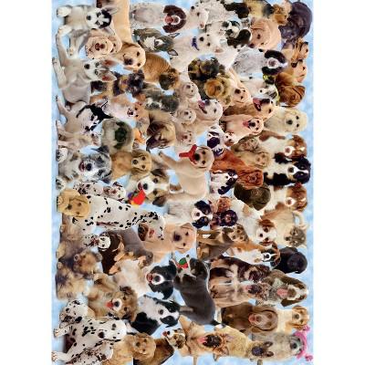 Ravensburger Dogs Galore! Puzzle 1000pc
