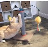 SmartyKat Scratch and Spin Carpet Cat Scratcher - image 4 of 4