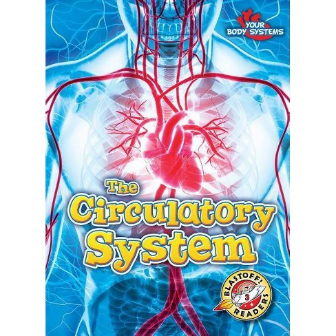 The Circulatory System - (Your Body Systems) by  Rebecca Pettiford (Paperback) - image 1 of 1