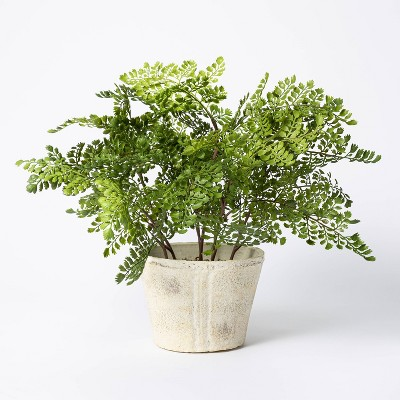 "18"" x 15"" Artificial Fern Plant in Pot - Threshold™ designed with Studio McGee"
