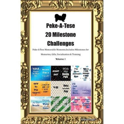 Peke-A-Tese 20 Milestone Challenges Peke-A-Tese Memorable Moments.Includes Milestones for Memories, - image 1 of 1