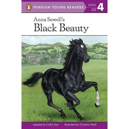 Summary of black beauty — photo 4