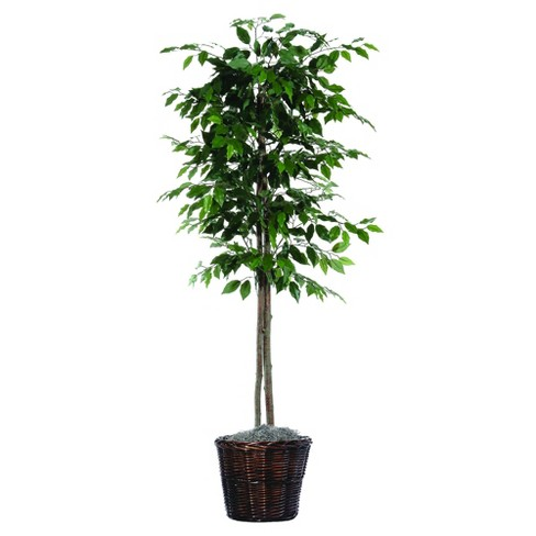 "Artificial Ficus Tree - Green (6"") - image 1 of 3"