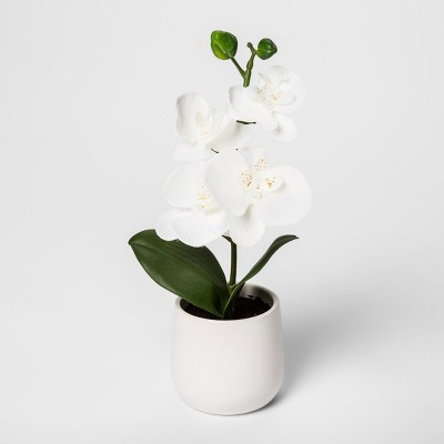 12  x 5.5  Artificial Orchid White/Green - Threshold™