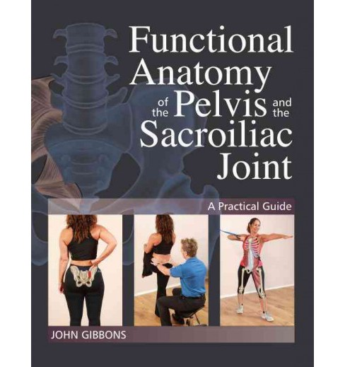 Functional Anatomy of the Pelvis and the Sacroiliac Joint : A Practical Guide (Paperback) (John Gibbons) - image 1 of 1