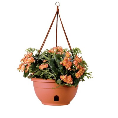 Self-Watering Hanging Basket - Gardener's Supply Company