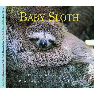 Baby Sloth - (Nature Babies (Paperback))by Aubrey Lang (Paperback)
