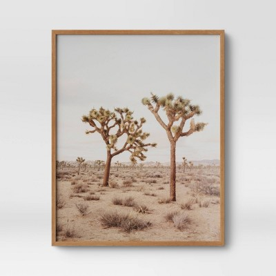 "24"" x 30"" Joshua Tree Framed Print - Threshold™"