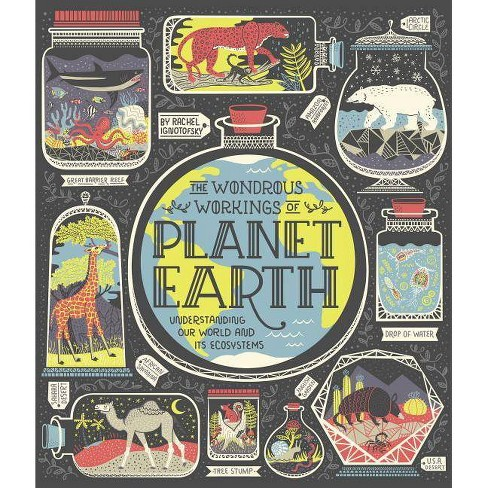 The Wondrous Workings of Planet Earth - by  Rachel Ignotofsky (Hardcover) - image 1 of 1