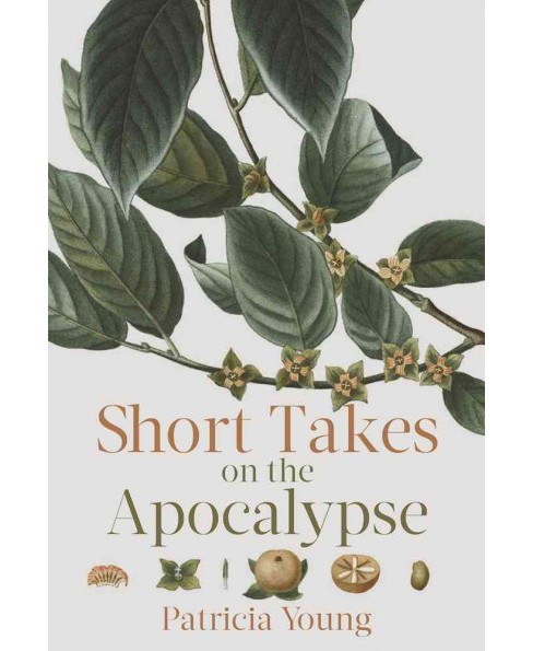 Short Takes on the Apocalypse (Paperback) (Patricia Young) - image 1 of 1