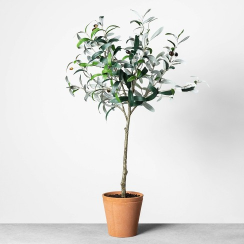 """32"""" Faux Olive Branch Plant - Hearth & Hand™ with Magnolia - image 1 of 3"""